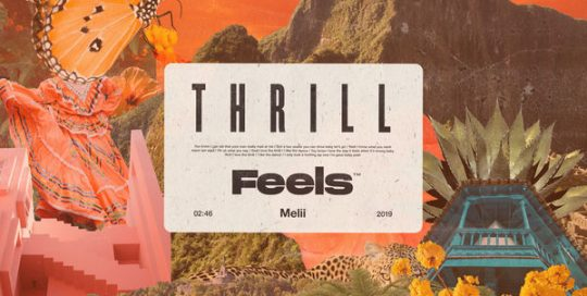 Feels - Thrill ft. Melii