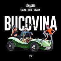 Kongsted - Bucovina feat. Basim, Navid, Cisilia